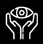 iconos pfi (4)